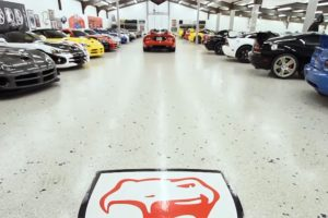 World's Largest Viper Collection video