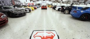 (VIDEO) World's Largest Viper Collection